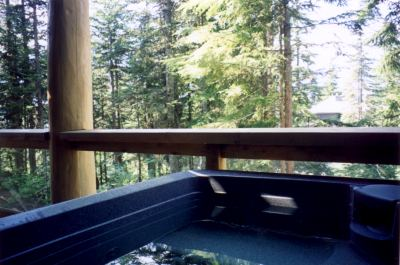 Private hot tub on the deck with Mother Nature at your doorstep